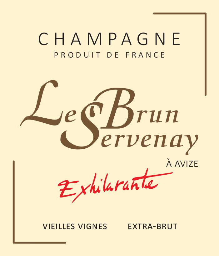 union champagne 51190 avize